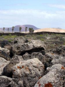 Internship on Fuerteventura_Locations