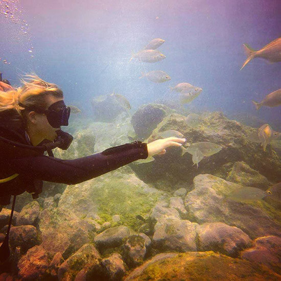 Diving Isole Canarie