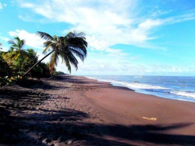 Costa Rica black lonesome Beach