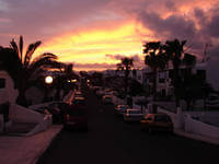 Sonnenuntergang auf Lanzarote mit Palmen