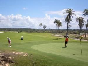 Cancha de golf Marbella con palmeras