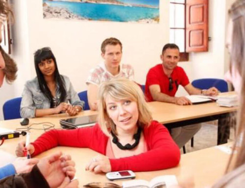 New: English language courses on Malta