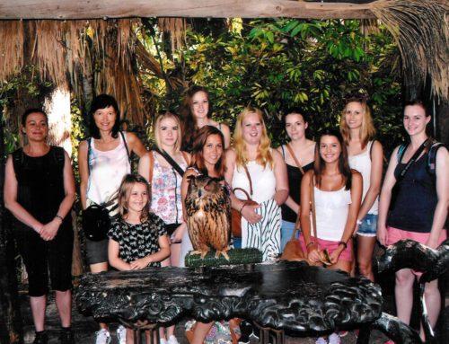 In the Jungle – Hotel internship on Tenerife