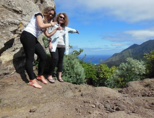 An intern´s experience – hotel work placement Tenerife
