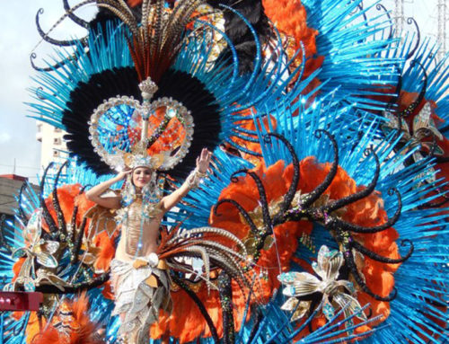 Carnival during your hotel internship on the Canary Islands!