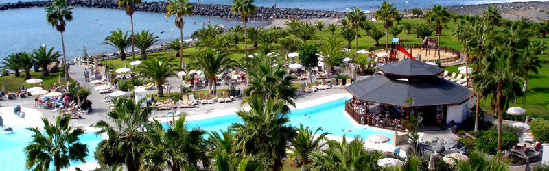 Tenerife Pool Palm Trees Sea and Sun