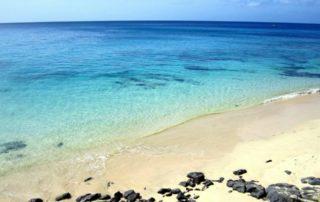 internship on Fuerteventura