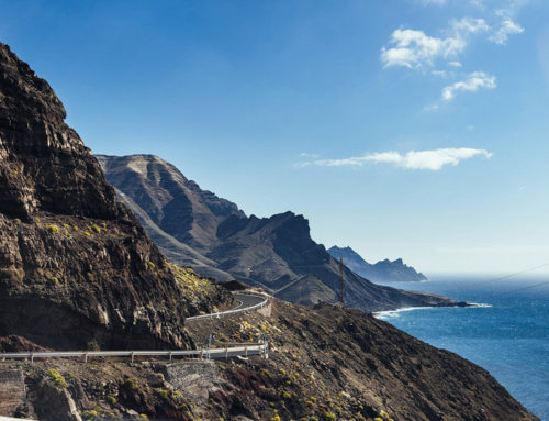 Internship Spain – top 10 of your internship on Gran Canaria