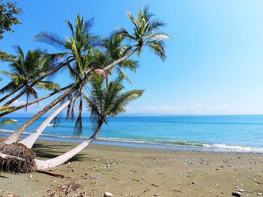 Internship Costa Rica_