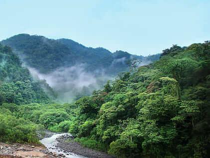 Internships Costa Rica