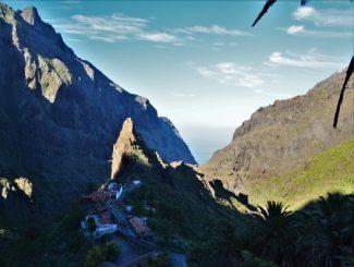 Internships on Tenerife