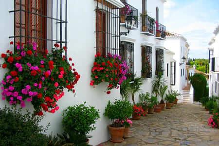 Expériences professionnelles en Espagne Marbella